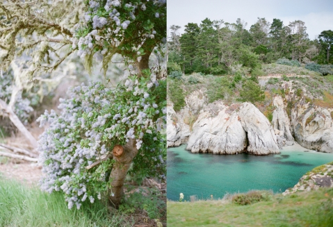 Carmel, California, Amanda Nippoldt Photography, Travel, Destination Wedding, Emily Lane Style, Film, Amanda Nippoldt, Point Lobos